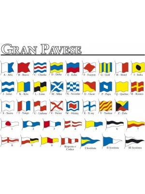 Gran Pavese - Codice Internazi 228