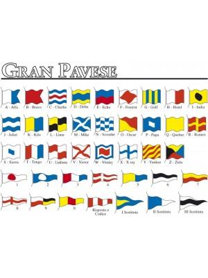 Gran Pavese - Codice Internazi 228eco